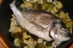 Gesundes Mittagessen: Dorade auf Gemüsebett